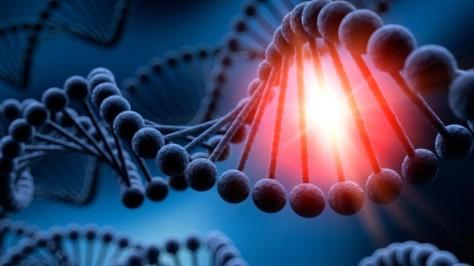 ADN-1-840x473